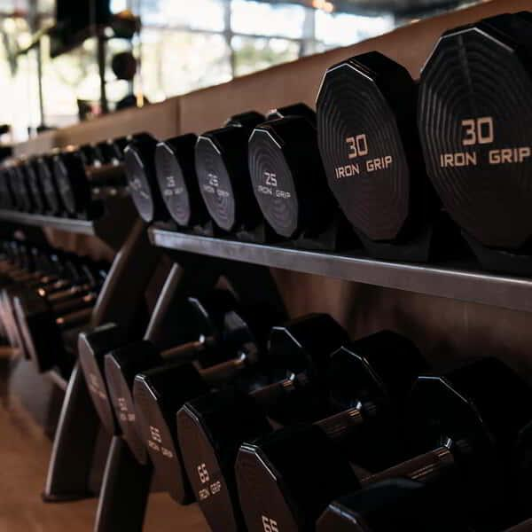 Weights sitting on a rack at ARIA.