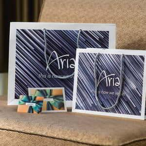aria-amenities-giftcard-retail.tif.image.300.300.high