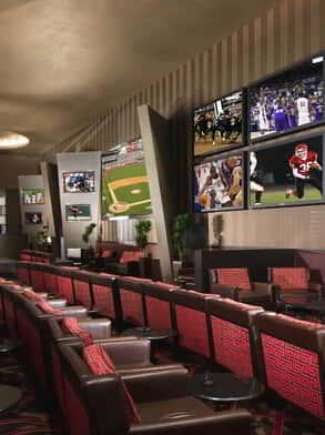 aria-race-and-sports-book-wall