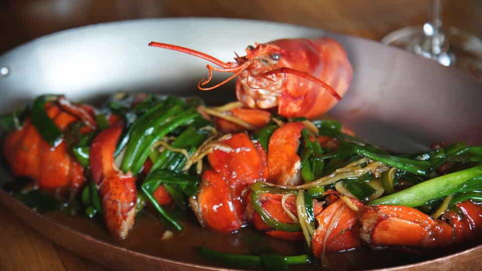 Lobster at CATCH.