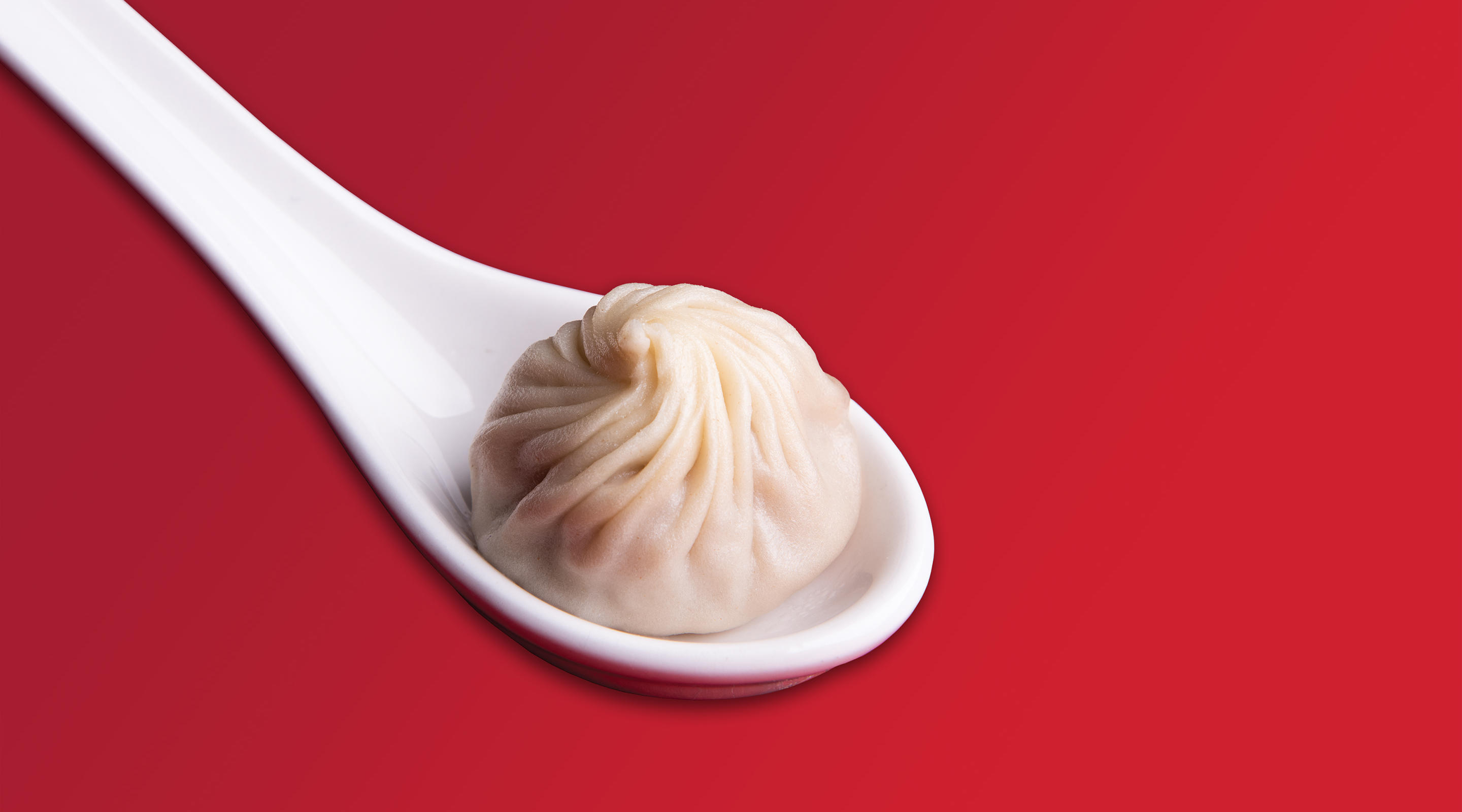 A Xiao Long Bao from Din Tai Fung at ARIA.