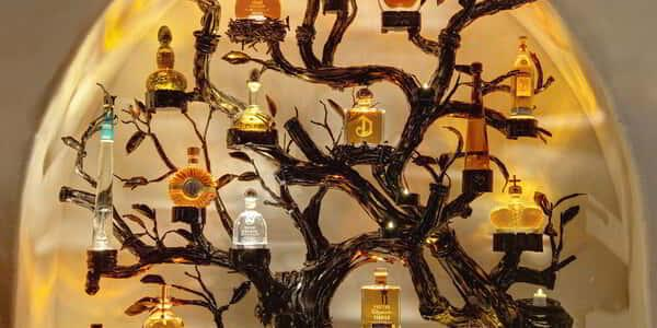 aria-dining-javiers-tequila-tree