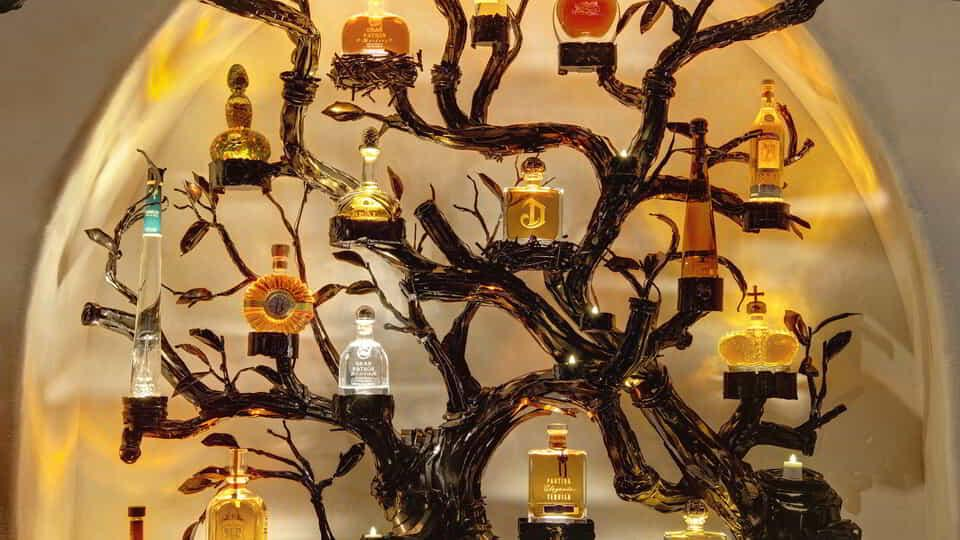 The tequila tree offers a seemingly endless collection of the world's finest tequila.