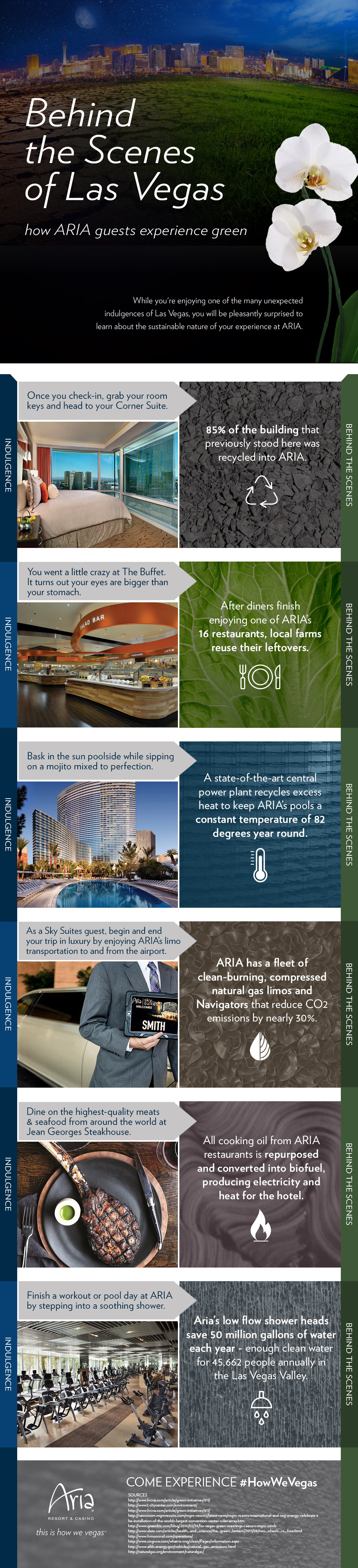 LEED Certified Sustainability in Las Vegas infographic