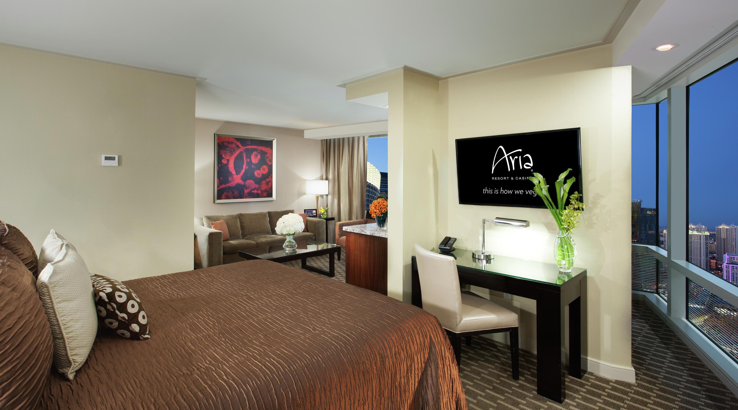 Experience ARIA's Panoramic Studio Suite.