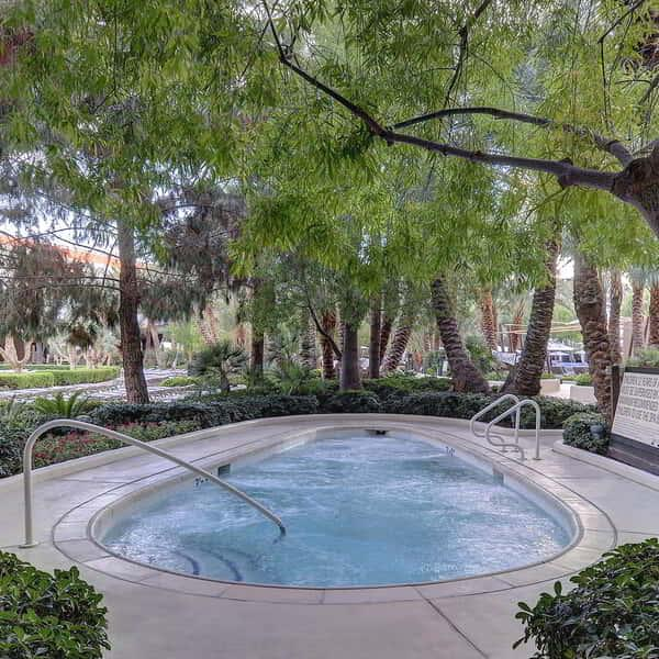 aria-amenities-pool-hot-tub
