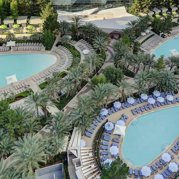 aria-amenities-pool-overhead-view