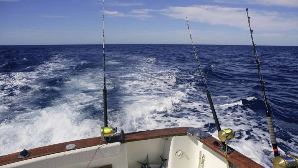 Experience deep sea fishing on the Gulf Coast.