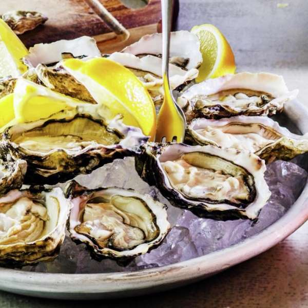 Enjoy oysters from the Gulf Coast.