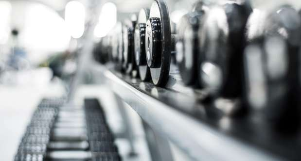 This is a detail photo of a rack of free weights.