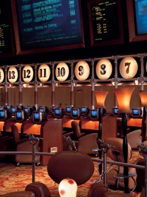 Our ultra sleek Race & Sports Book is the epicenter of action!