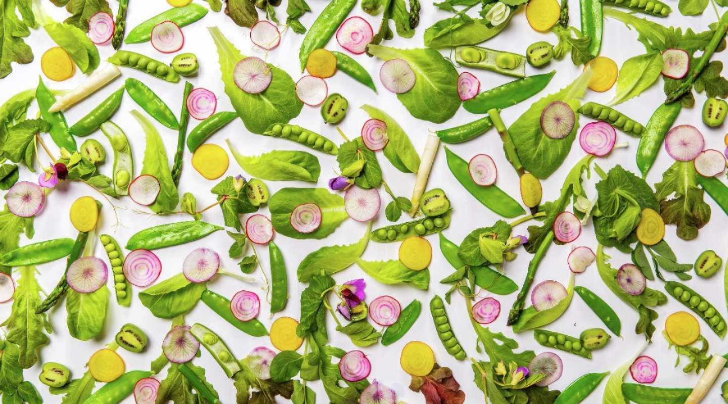 A mosaic of fresh vegetables & herbs from Harvest by Roy Ellamar.