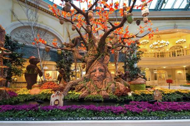 The Bellagio Conservatory has been redesigned for the fall season.