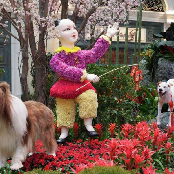 Chinese New Year 2018 features dancing child with dogs