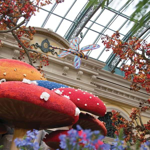 A close up of the floral mushrooms display at the Bellagio Conservatory.