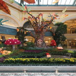 The talking tree and magical forest at the Bellagio Conservatory.