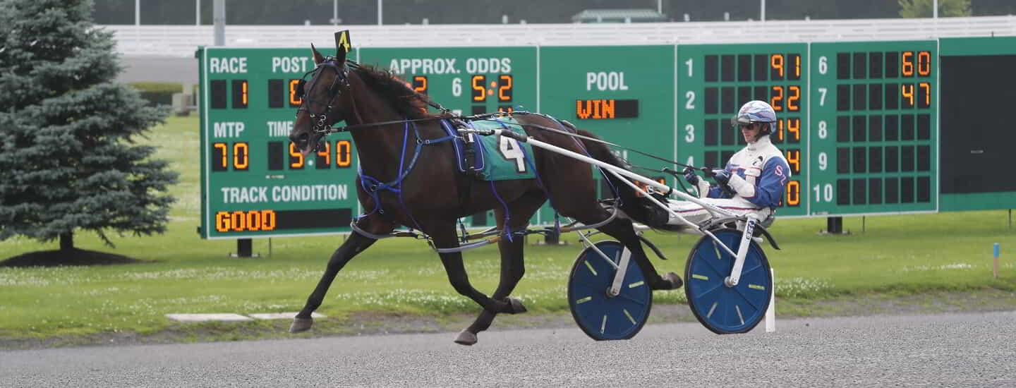 Empire City Casino horse racer number 9.