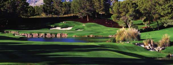 This is Shadow Creek golf course.