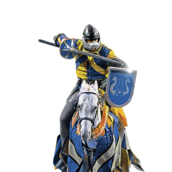 excalibur-entertainment-tok-blue-knight-tile