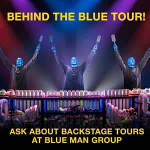 Blue Man Group drum on different sized pipes creating different musical sounds.