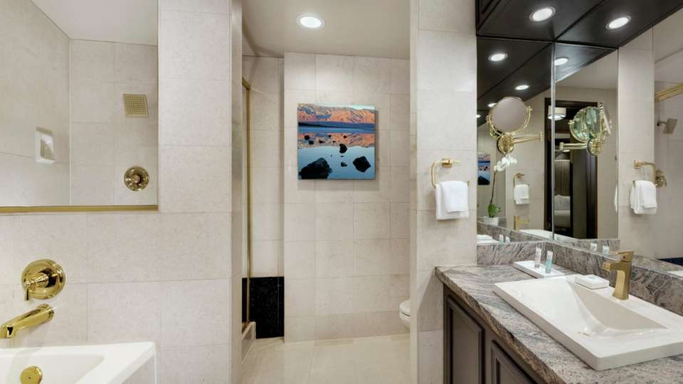 Image of the Tower Premium Bathroom.