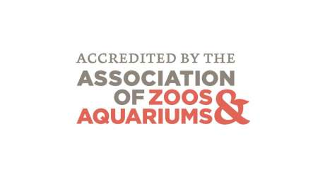 AZA Accreditation
