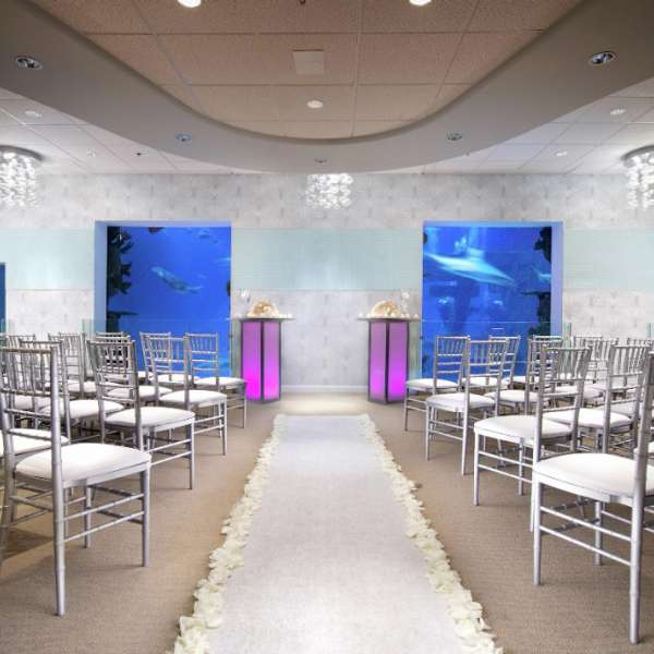 mandalay-bay-weddings-shark-reef-seascape