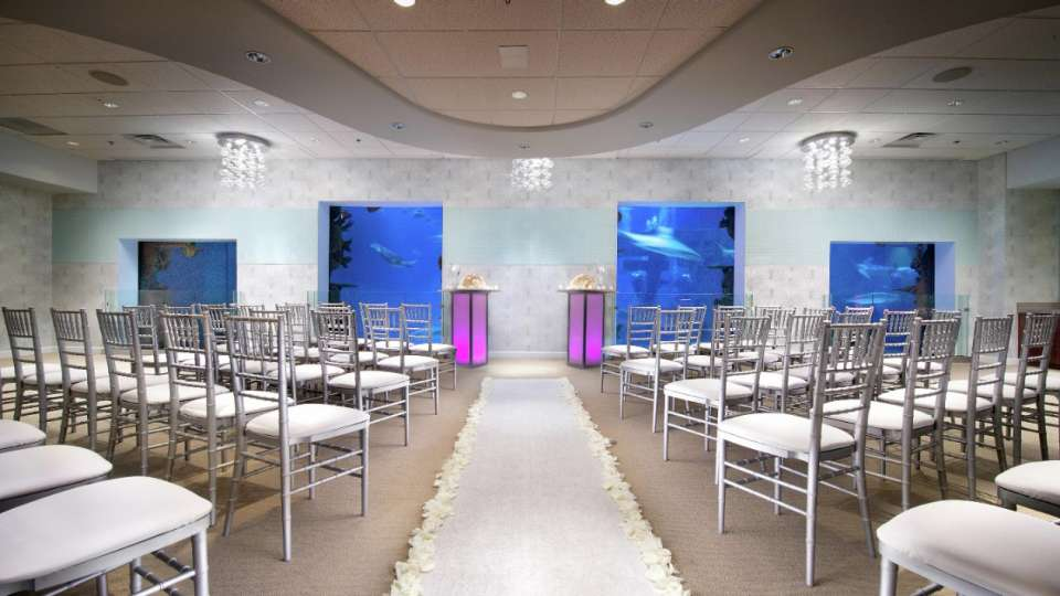 Wedding Ceremony in Seascape at Shark Reef