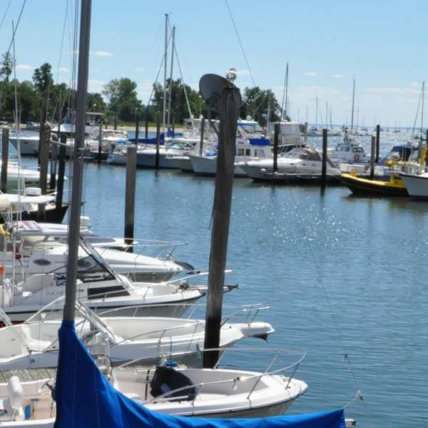 Boats docked in Bridgeport.