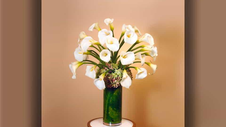 From calla lilies to red roses, our Grand Floral can design magnificent floral arrangements to mark any crowning moment.