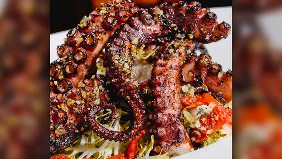 Octopus at Fiamma Trattoria & Bar