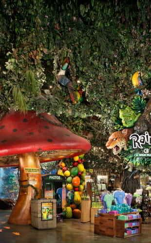 Rainforest Cafe Exterior