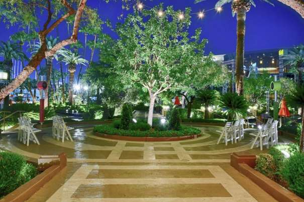 A beautiful view of Love Tree wedding ceremony.