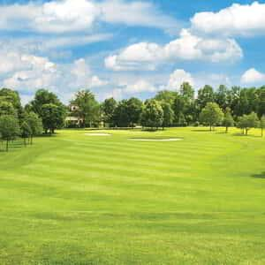 new-york-new-york-amenities-golf.tif.image.300.300.high