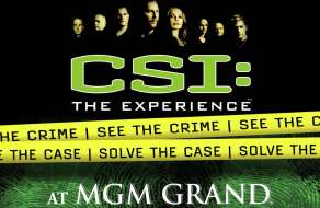 new-york-new-york-mgm-grand-csi-the-experience