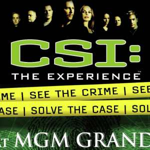 new-york-new-york-mgm-grand-csi-the-experience.tif.image.300.300.high