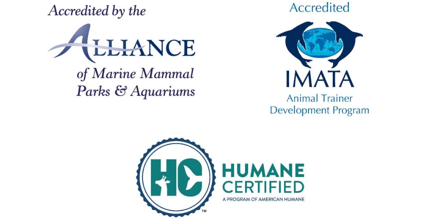 Accredited by the Alliance of Marine Mammal Parks and Aquariums, the International Marine Animal Trainers Association Animal Trainer Development Program, and Humane Certified by American Humane.