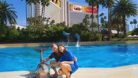 mirage-secret-garden-dolphin-habitat-boomer-couple-dolphin
