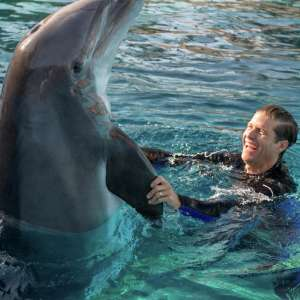 Get up close and personal with our dolphins as you work with dolphin specialists to go from tourist to trainer