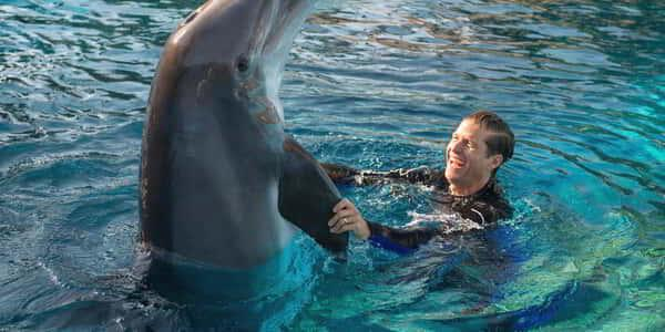 mirage-secret-garden-dolphin-habitat-trainer-man-shaking-water