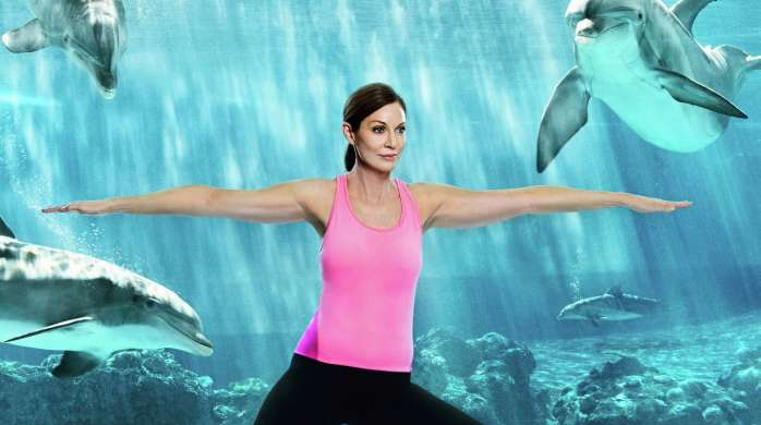 Find balance and serenity as you practice yoga with the dolphins in the underwater viewing area