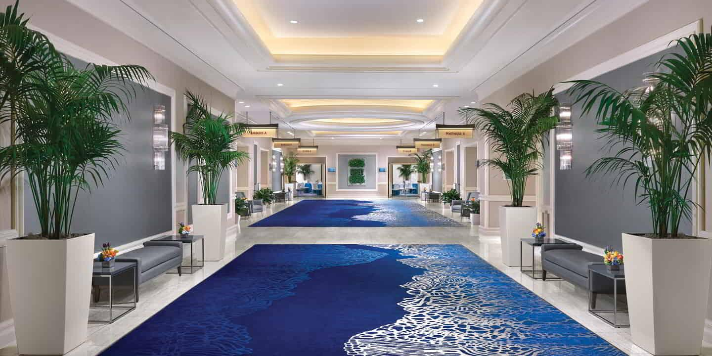 Staywell Meetings hallway with blue carpet.