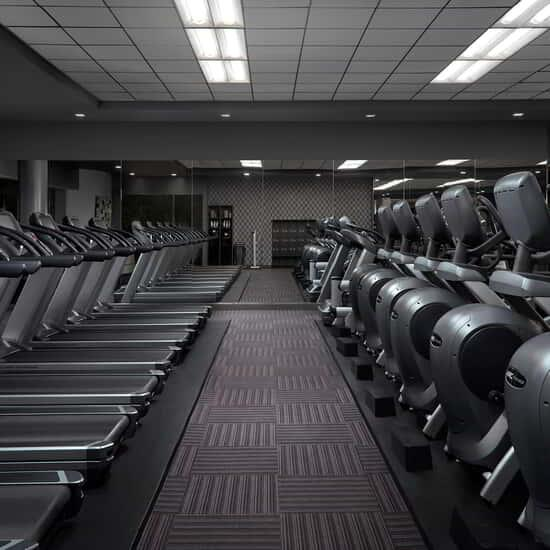 Rows of treadmills inside the Fitness Center.
