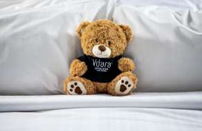 vdara-hotel-retail-teddy-bear