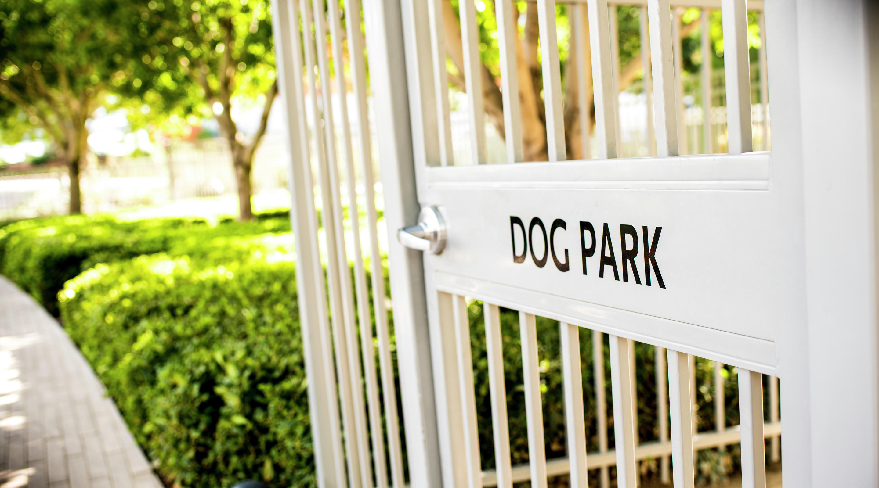 We've designated special suites for guests accompanied by their trusty pooches, and set aside a lovely park for morning walks.